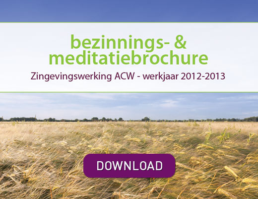 zingeving download